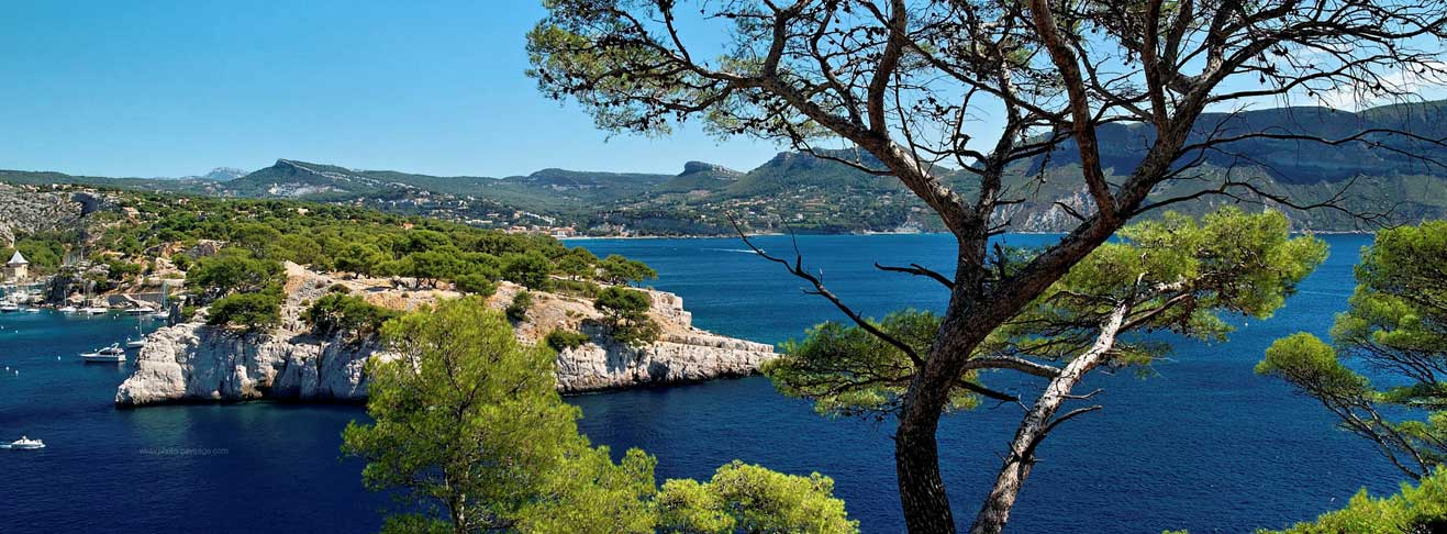 LookING FOR A PROPERTY IN Marseille?