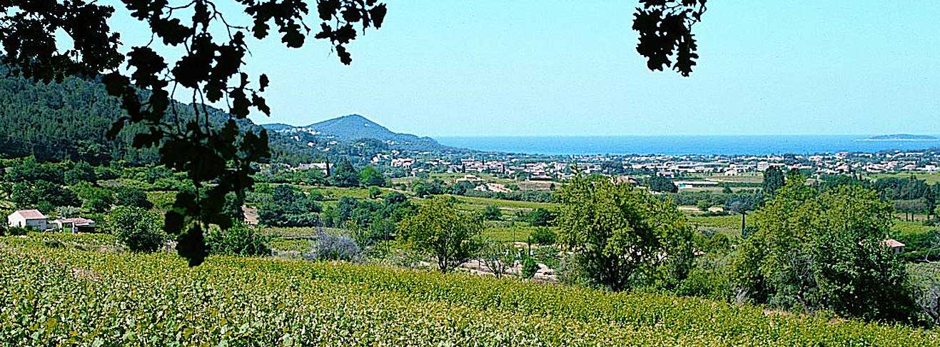 LookING FOR A PROPERTY on the Provence Coast?