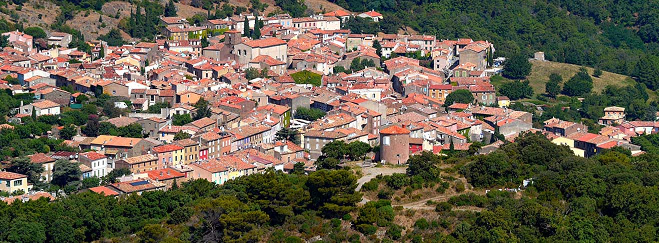 LooKING FOR A PROPERTY IN GRIMAUD?